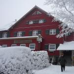 Ebertswiese im Schnee